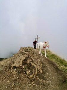 La cima del Monte Bue